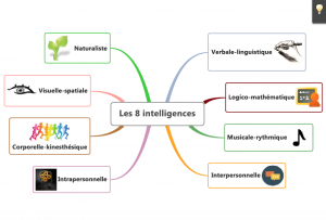 Les 8 intelligences - howard gardner